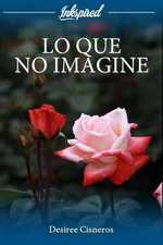 LO QUE NO IMAGINE