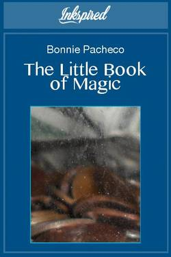 The Little Book of Magic