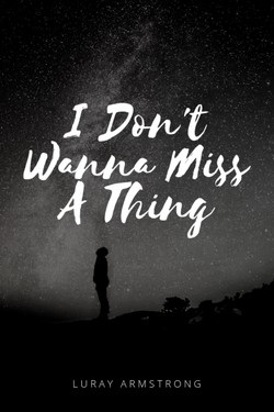 I Don't Wanna Miss A Thing