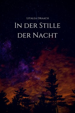 In der Stille der Nacht
