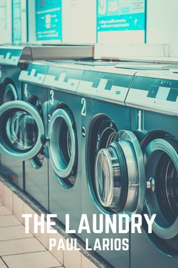 The Laundry